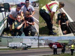 polk county news, ocala news, marion county news, firefighters, animal rescue,