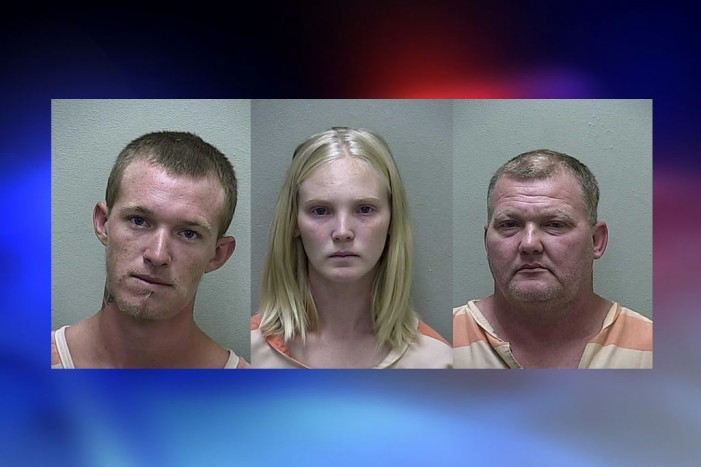 Food stamp purchase leads troopers to felony battery / hit and run suspects
