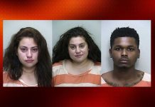 ocala news, marion county news, domestic violence, florida