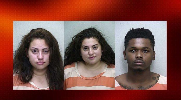 ocala news, marion county news, domestic violence, florida