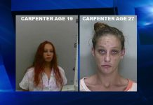 Joyce D. Carpenter, meth, methamphetamine, ocala post, op, grand theft