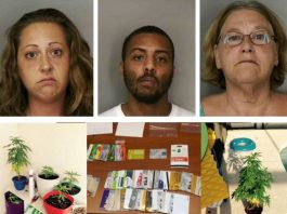 food stamps, polk county, davenport news, ocala news, florida, marijuana, credit card fraud