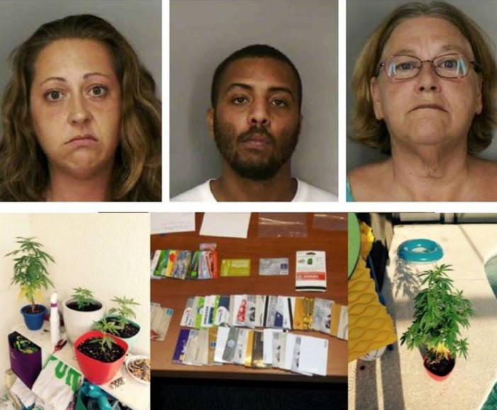Family was using taxpayer money and committing credit card fraud while smoking dope