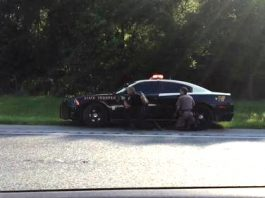 fhp shooting on I-75, ocala news, alachua county news, marion county, micanopy, shooting