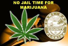 marijuana, florida, miami-dade county, weed, pot,