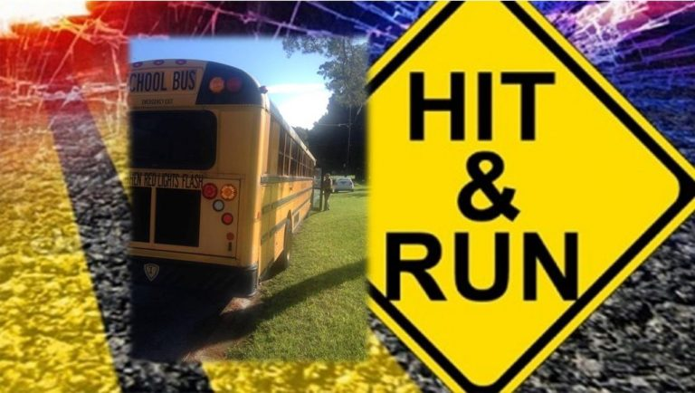 FHP: Hit-and-run involving school bus; information needed