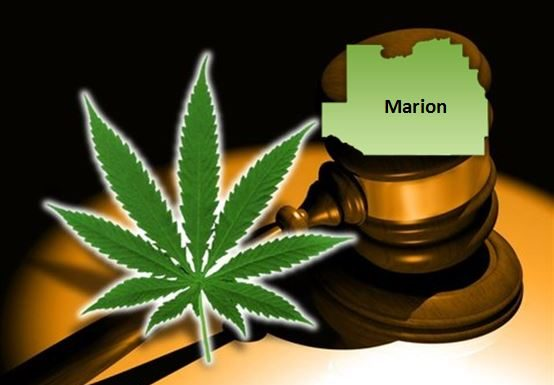 marijuana, florida, marijuana in marion county, legalization, decriminalize marijuana