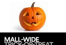 paddock mall, halloween 2015, mall-o-ween, trick or treat, ocala news, ocala events, ocala post