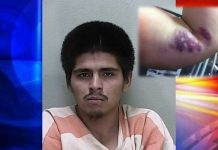 ocala news, illegal immigrants, mexicans, mexico, florida, marion county news, illegal immigrant beats woman