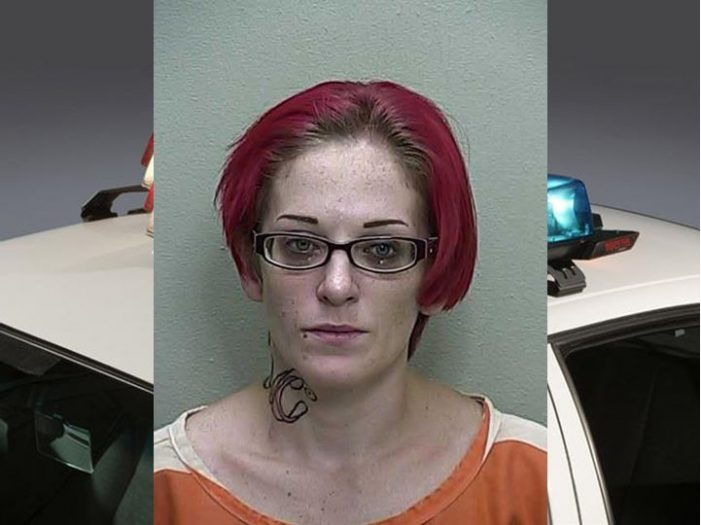 Leesburg car thief tracked to Ocala, faces several charges