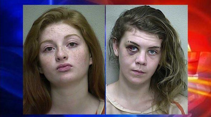 ocala news, marion county news, burglary, ocala post, grand theft