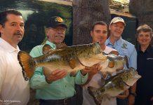 fwc, florida, fishing, ocala post, trophy catch
