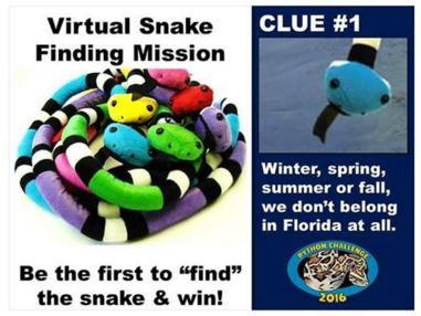 virtual snakes