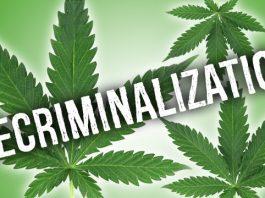 decriminalize marijuana, ocala news, orlando news, marion county news, marijuana