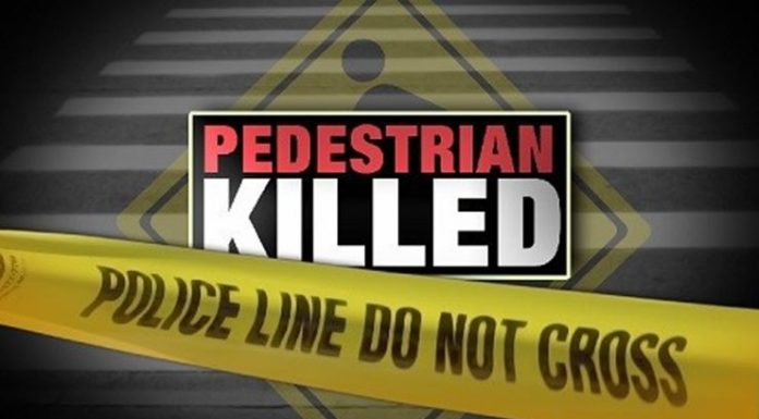 pedestrian killed, marion oaks, ocala news, fatal crash