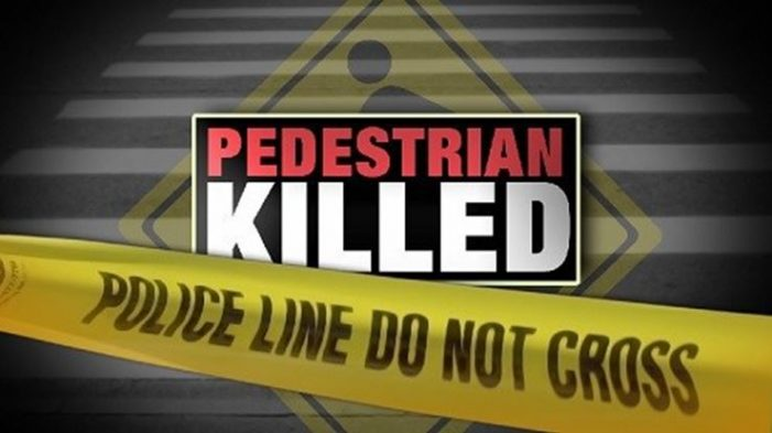 Woman and her dog die after being struck by car