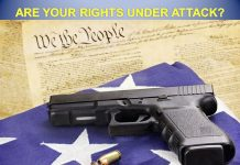 gin control, Florida, gun rights, second amendment, 2nd amendment. nra