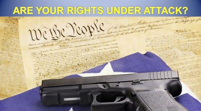 gin control, Florida, gun rights, second amendment, 2nd amendment. nra