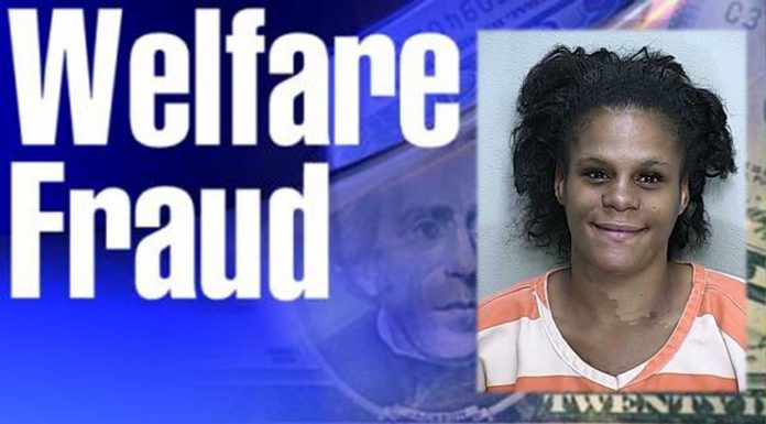 welfare fraud, ocala news, marion county news, food stamps