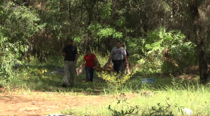 human remains, ocala news, dunnellon, body found