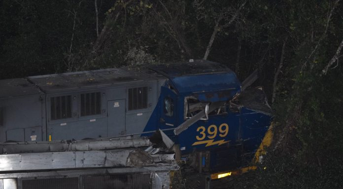 train crash, train derailment, citra train crash