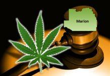 medical marijuana, ocala, marion county, amendment 2