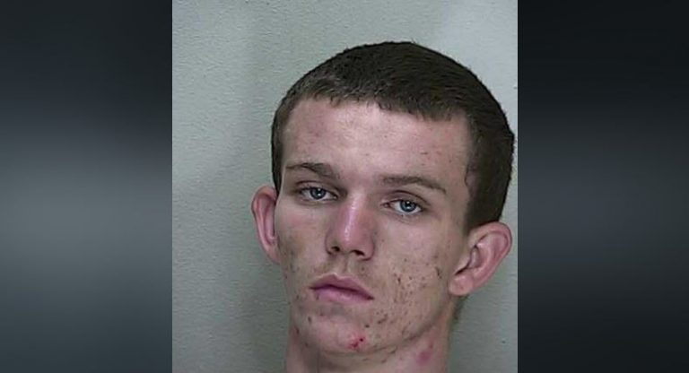 Teen stole truck, passed out