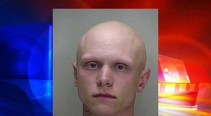 pregnant, domestic battery, aggravated battery, ocala news, ocala post, marion county news