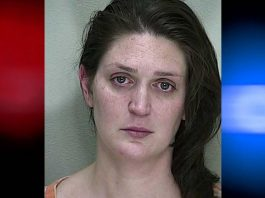 Sofia MacFarlnd, child neglect, child abuse, leave chil din car, ocala news, marion county news
