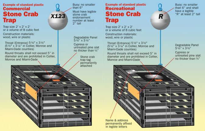 stone crab season, fishing, florida fishing, ocala news, ocala post, FWC