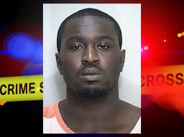 woman beater, domestic violence, ocala news, ocala post
