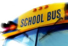 ocala news, ocala post, school bus crash