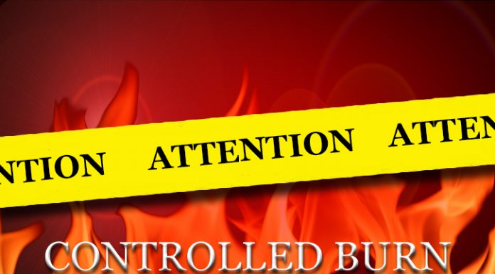 controlled burn, ocala news, ocala post