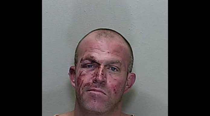 ocala news, ocala post, domestic battery