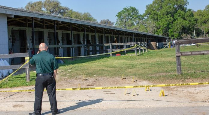 horse farm shooting, ocala news, ocala post
