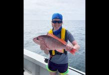 snapper, red snapper, ocala news, fishing