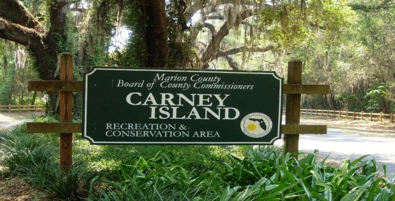 Docks closed at Carney Island Recreation and Conservation Area