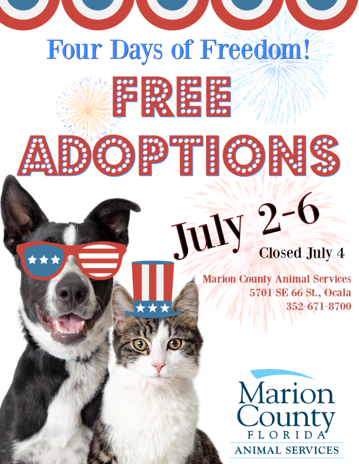 free pet adoption, ocala news, ocala post, animals