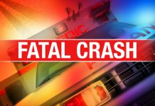 fatal crash, umatilla, ocala post