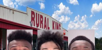 rural king, theft, guns, ocala news, ocala post