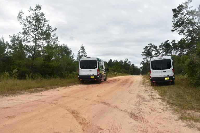 Human remains found by hunter