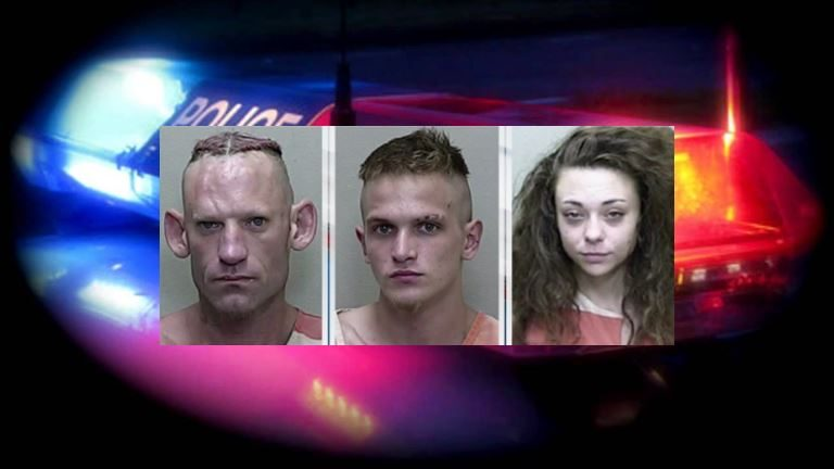 Felons arrested following traffic stop, multiple charges