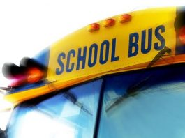 school bus crash, ocala news, ocala post