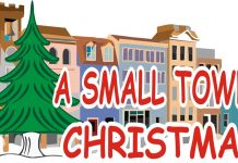 belleview christmas parade, belleview news, ocala news, ocala post