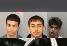 ocala news, ocala post, armed robbery