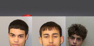 ocala news, ocala post, armed robbery