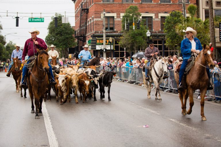 Cattle Drive and Cowboy Round-Up event