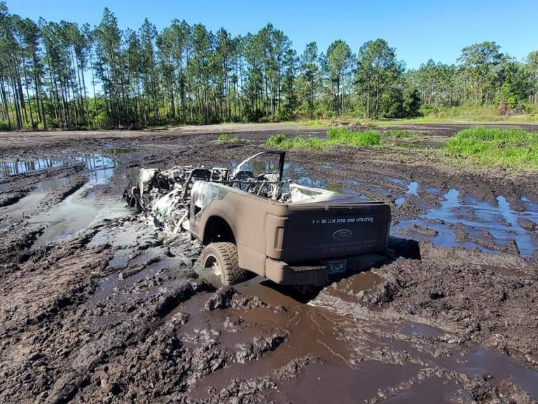 Truck reported stolen, later found torched