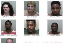 ocala news, ocala post, udest, drug bust,