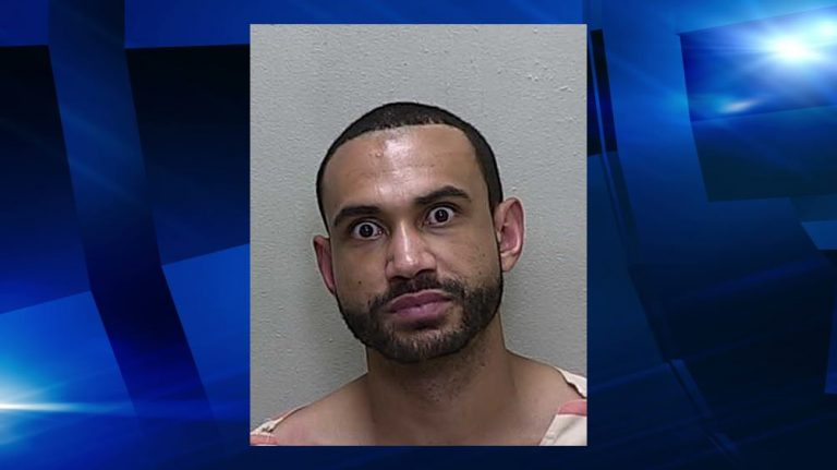 Man battered his mother while driving, had recently been released from jail